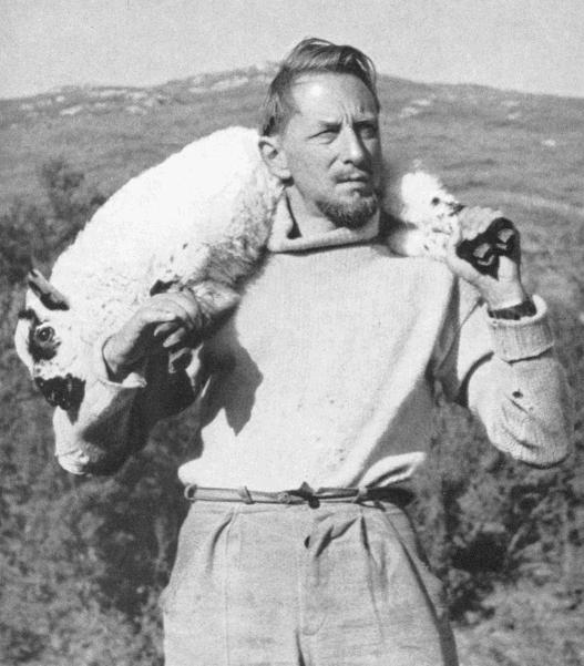 gm-lamb